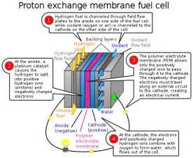 Proton Exchange Membrane For Sale Water Fuel Cell Diagram Water Get Free Image About