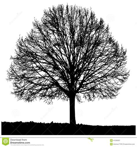 design elements lone tree silhouette of a lone tree stock illustration image 41295937