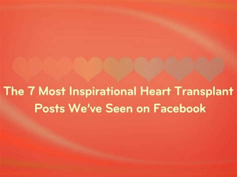 The 7 Most Inspiring by The 7 Most Inspirational Transplant Posts We Ve Seen