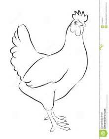 Sketch Of Hen Stock Vector  Image 41442835 sketch template