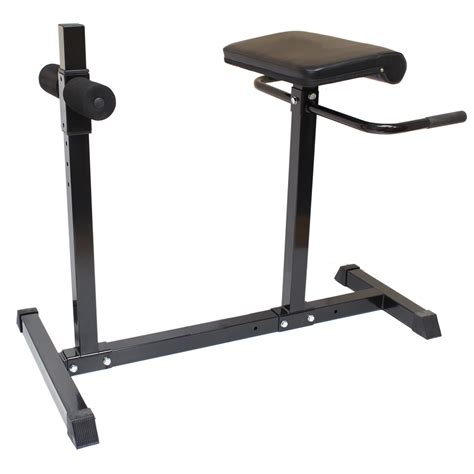 lower back exercise bench hyper extension roman bench for lower back ab stomach
