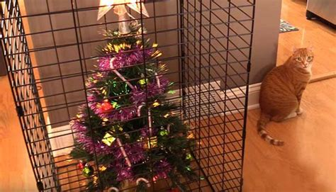protect christmas tree from cat 22 genius ways to protect your tree from pets and toddlers s lounge