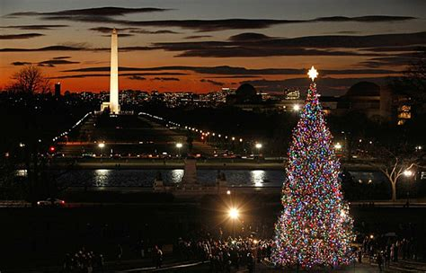 christmas trees dc the 10 most amazing trees in the u s