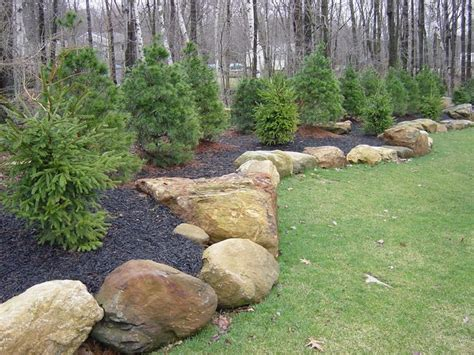Landscape Edging With Boulders 17 Best Ideas About Privacy Plants On Garden