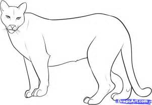 How To Draw A Mountain Lion Step 8 sketch template