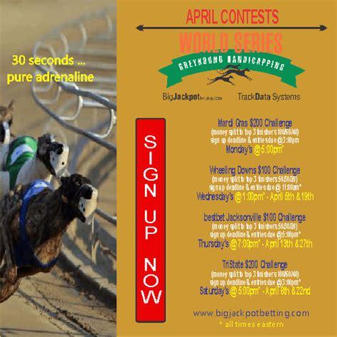 greyhoundnews greyhound racing today saturday april