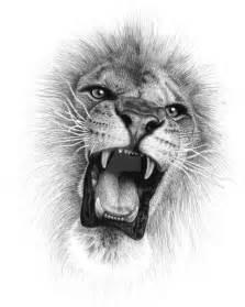 best 25 roaring lion drawing ideas on pinterest lion
