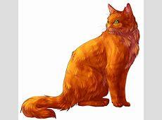 Firestar By Aniritak On DeviantArt Warrior Cats Wallpaper