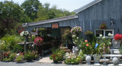 lowe s bayshore nursery and garden center kent island md