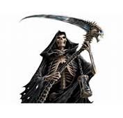 Grim Reaper Vector Graphics Genius Clip Art Image