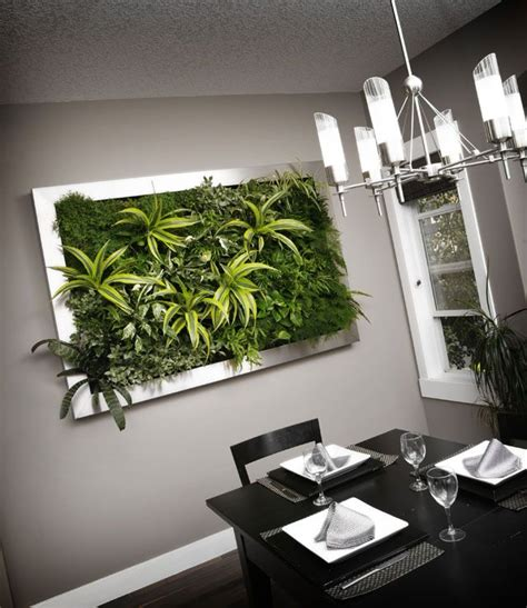 Indoor Vertical Garden Systems 25 Best Indoor Vertical Gardens Ideas On Wall