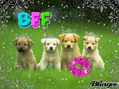 bff puppies bff puppies picture 112321935 blingee