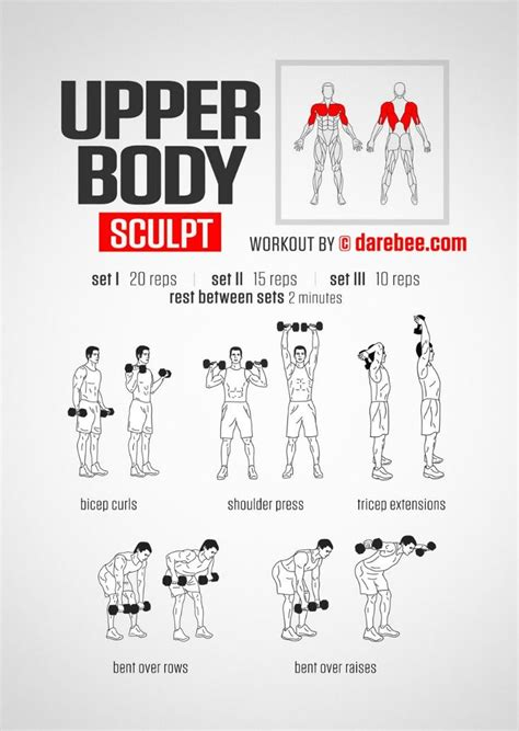 best 25 chest workout at home ideas on back