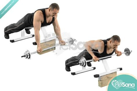 reverse incline bench incline barbell bent over row pictures to pin on pinterest