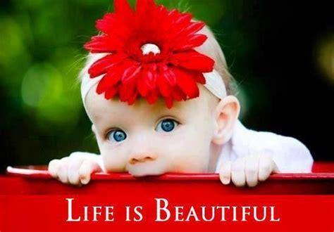 life is beautiful blogspot life is beautiful steemit