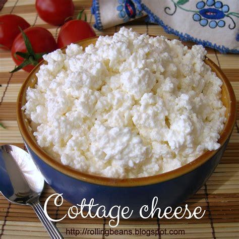 formaggio cottage come fare il cottage cheese fiocchi di latte
