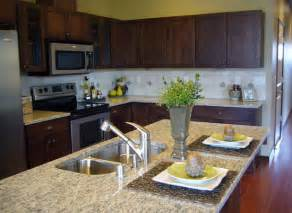 Sink Island Kitchen by Kitchen Island With Sink Ideas Home Design Ideas