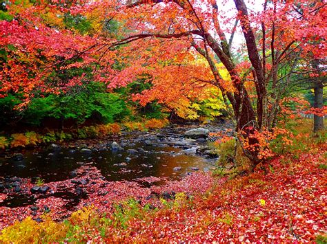 fall colors plan your escape 174 world travel adventures unhook now