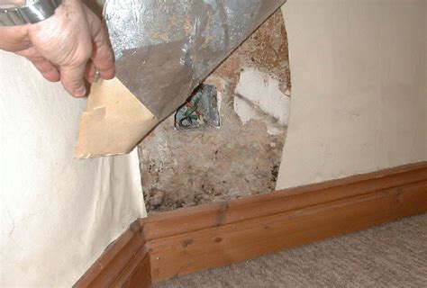 wallpaper for moist walls independent d surveys in wiltshire by the independent