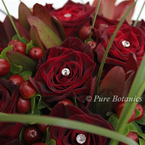 theme black rose black baccara roses for a deep burgundy red colour theme