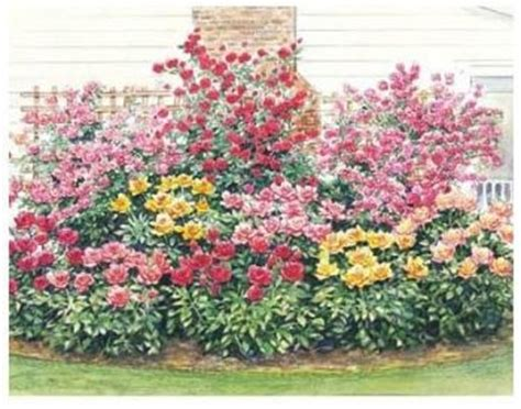 Perennial Gardens Perennials And Flowers Garden On Pinterest Flower Garden Plan
