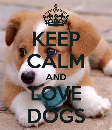 keep calm and puppies keep calm and dogs poster kaka keep calm o matic