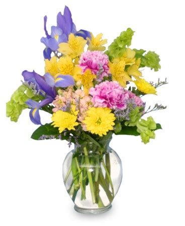 Flowers In A Vase by Splash Of Flowers In A Vase Just Because Flower