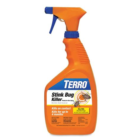 spray for bed bugs amazon com terro 3600 32 oz stink bug killer ready to use spray stink bug traps