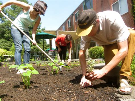 Garden Work by Area Therapy Programs Use Nature Connections For Healing