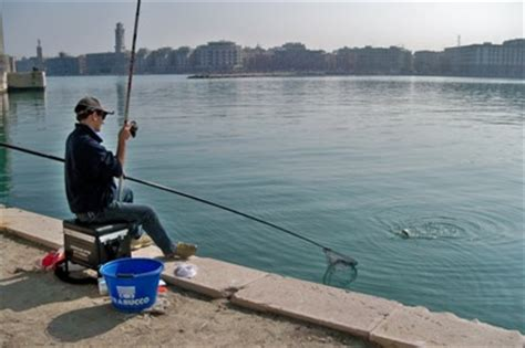 pesca al cefalo nei porti il molo sant antonio a bari