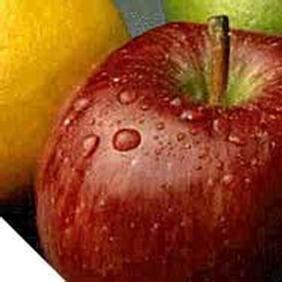 dove si trova lo zinco negli alimenti alimenti che rinforzano il sistema immunitario lifegate