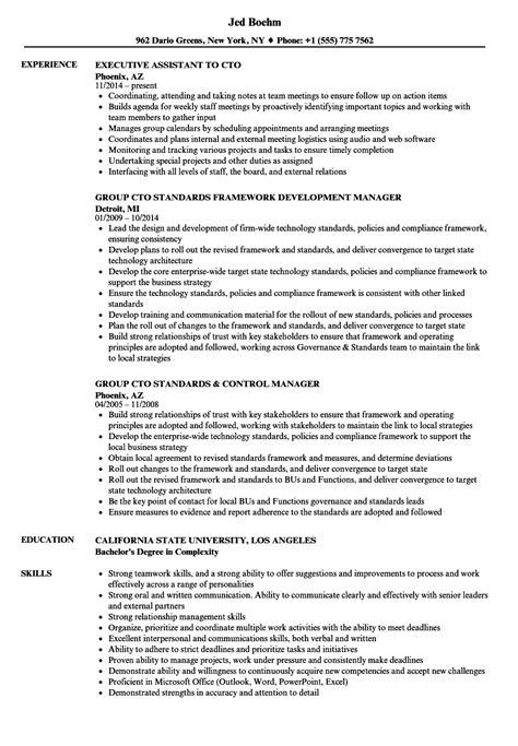 Cto Resume by Cto Resume Sles Velvet