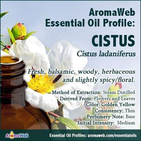 A Brief Profile Of A Few Essential Oils by 41 Best Essential And Absolute Profiles Images On