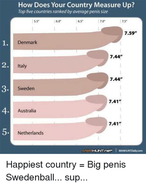 Different Pictures Of Size Of Penises