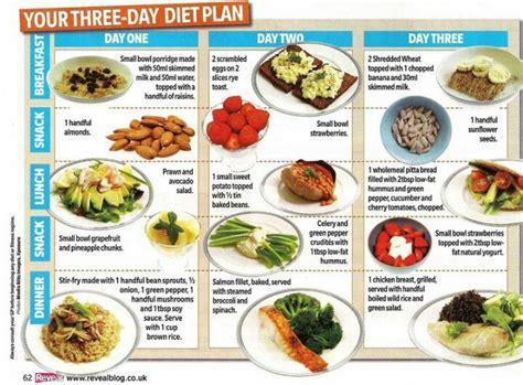 Gm Detox Diet Disadvantages by 3 Lbs A Week Diet Plan