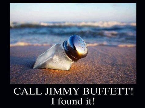Jimmy Buffett Wants Web Site Shut by 41 Best Lyrics Quotes Images On Lyric Quotes