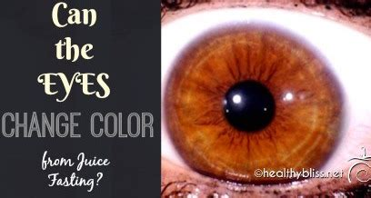 Iridology Detox by Food Recipes Detox Tips Food Additive Info
