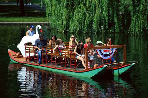 boston swan boats donation request 10 things you must do in boston