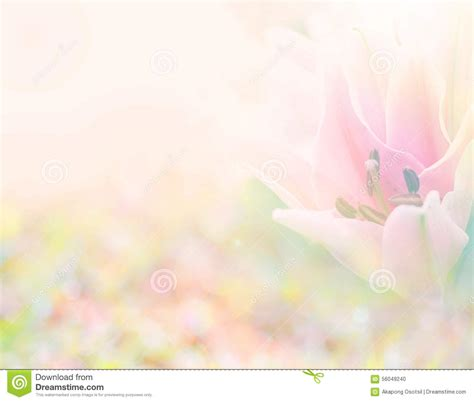 Soft Bordir Flower 2 abstract soft sweet pink flower background from