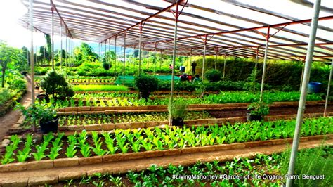 Garden Of Organic Farm In Digital Farm Tour The Garden Of Organic