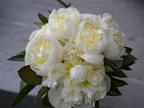 fiori d arancio reggio emilia bouquet sposa modena reggio emilia fiorista addobbi