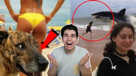 best photobomb pictures the funniest photobombs