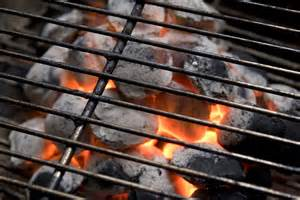 barbecue grills charcoal gas and electric grills