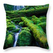 pillow proxy lower proxy falls photograph by inge johnsson