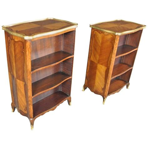 pair of 19th century bibliotheques for sale at 1stdibs