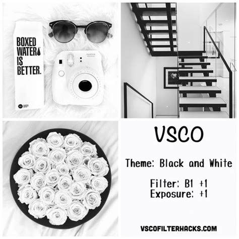 tutorial vsco white black and white instagram feed using vsco filter b1