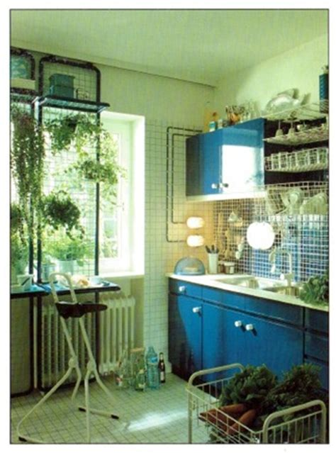 plants in the kitchen best plants to grow in a kitchen