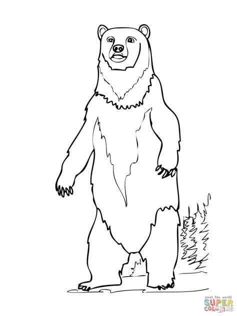 Free Coloring Pages How To - how to draw a brown brown standing up coloring