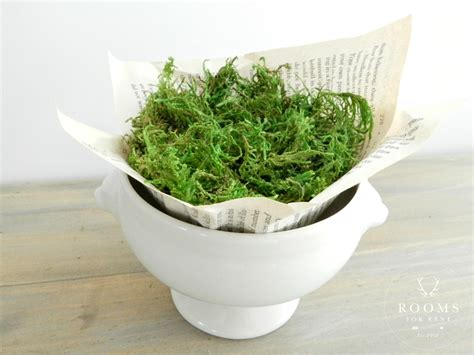 Moss Vase Filler by Vintage Easter Egg Place Setting Rooms For Rent