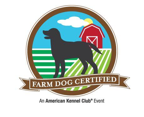 akc puppy test farm certified test american kennel club